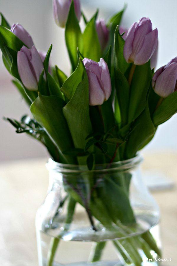 mini-mes tulpen
