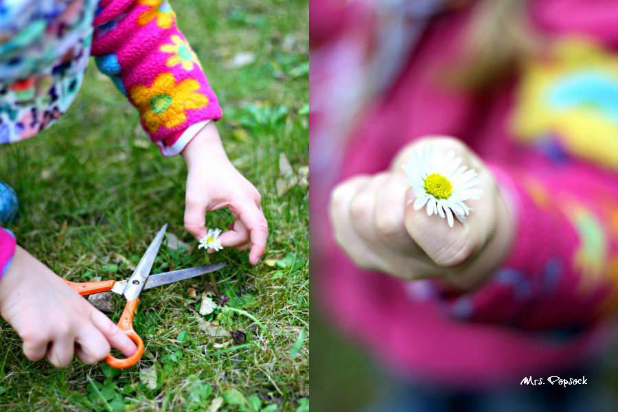Blumenschnitt & Beute
