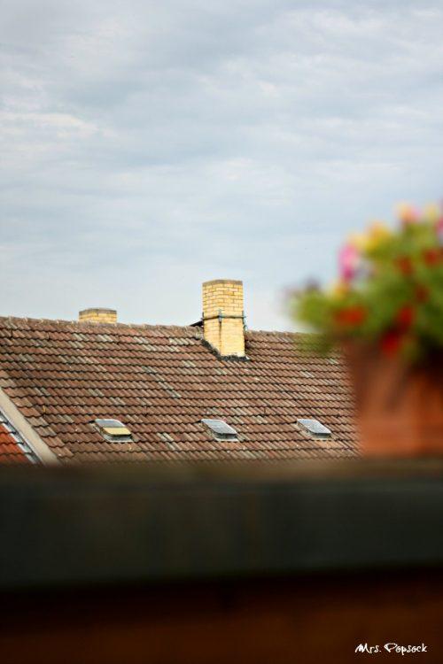 Dach-Ausblick