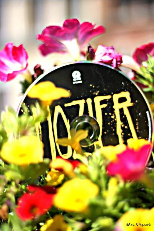 Hozier album
