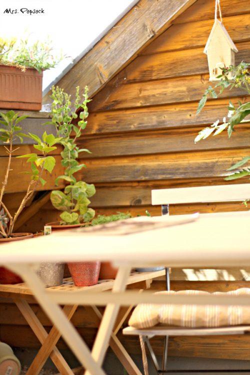 Im Dachgarten