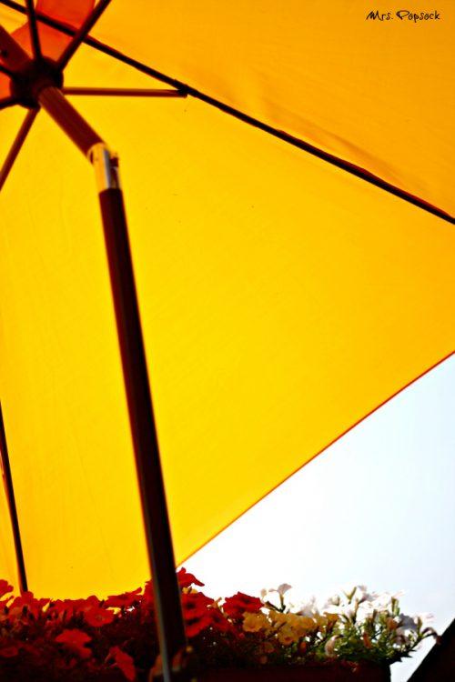 Sonnenschirm aufm Dach
