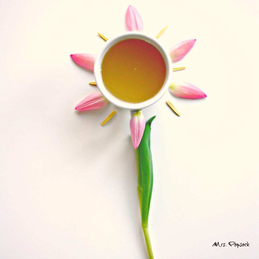 flower power februar - popsock
